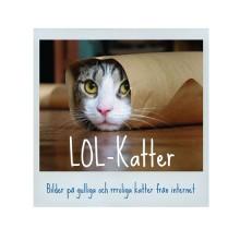 LOL-Katter