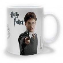 Harry Potter Kopp