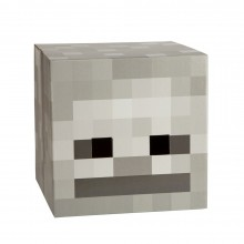 Minecraft Skeleton Hode