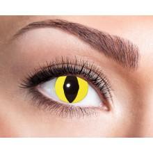 Fargede linser Yellow Cat