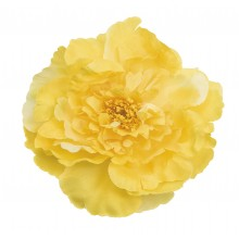 HÅRspenne Gul Blomst
