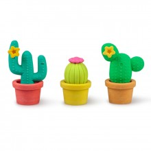 Kaktus Viskelær 3-pakning