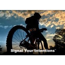 Signalsystem For Sykkelen