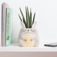 Min Nabo Totoro Potte