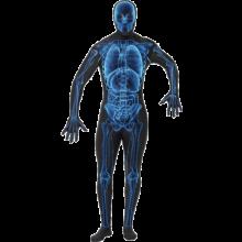 Røntgen Kostyme, Second Skin Drakt